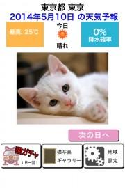 猫天気〜天気予報&可愛い猫写真〜 01