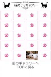 猫天気〜天気予報&可愛い猫写真〜 02