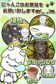 にゃんこ日和~ほのぼの子猫育成ゲーム~ 02
