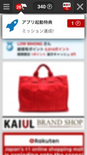 楽天ウェブ検索 03
