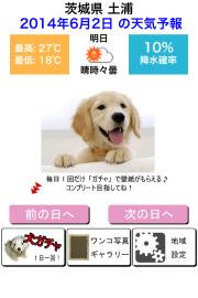 わんこ天気〜天気予報&可愛い犬の写真〜 01
