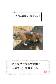 わんこ天気〜天気予報&可愛い犬の写真〜 02